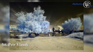 Magia barw na wystawie zdjęć Petra Vlasaka