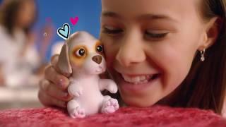 Little Live Pets | OMG Pets | TVC 20