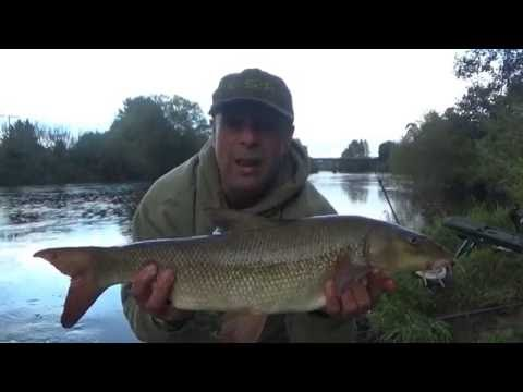 Fishing the flat method feeder on the River Wye