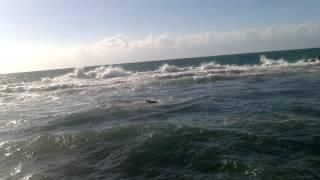 Привет со Средиземного моря! Хайфа! - #Галина #Журавка
