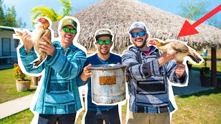 WILD Chicken CATCH CLEAN COOK in MEXICO!! (1v1 Cookoff)