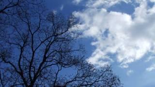 SunSet Swish の 「It's A Beautiful Day」です。「さくらびと」のシン...