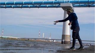 8月30日、江戸川放水路でハゼを釣ります。ハゼクラ投入して、晩酌は...