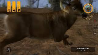 Deer Hunter Tournament Random Kills PC 60FPS