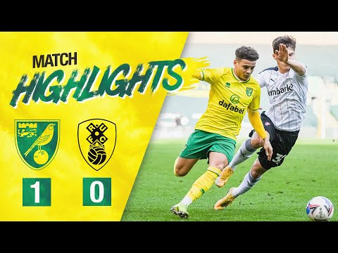 Norwich Rotherham Goals And Highlights