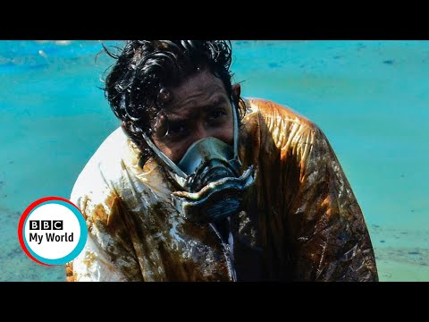 Fighting the oil spill in Mauritius - BBC My World