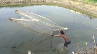 208 | Net Fishing in the Pond | cast net fishing in pond | Traditional net fishing