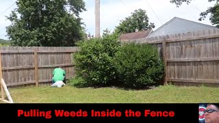 Pulling Weeds Inside the Fence