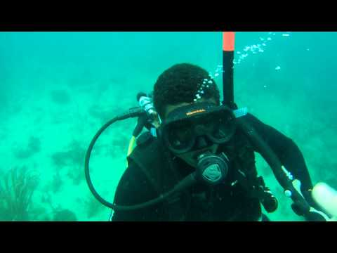 First dive ever - scuba diving at catalina island Dominican Republic