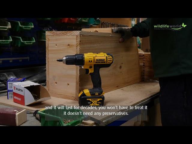 Filming Gladstone Sawmills