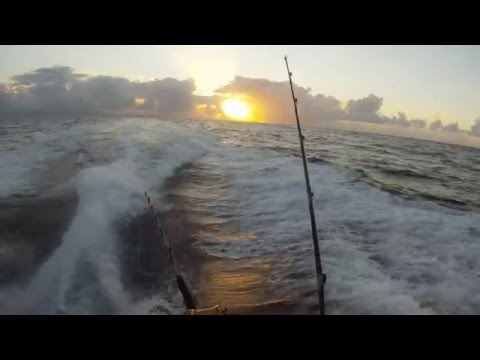 Offshore Sport Fishing Barbados - Mahi Mahi action!
