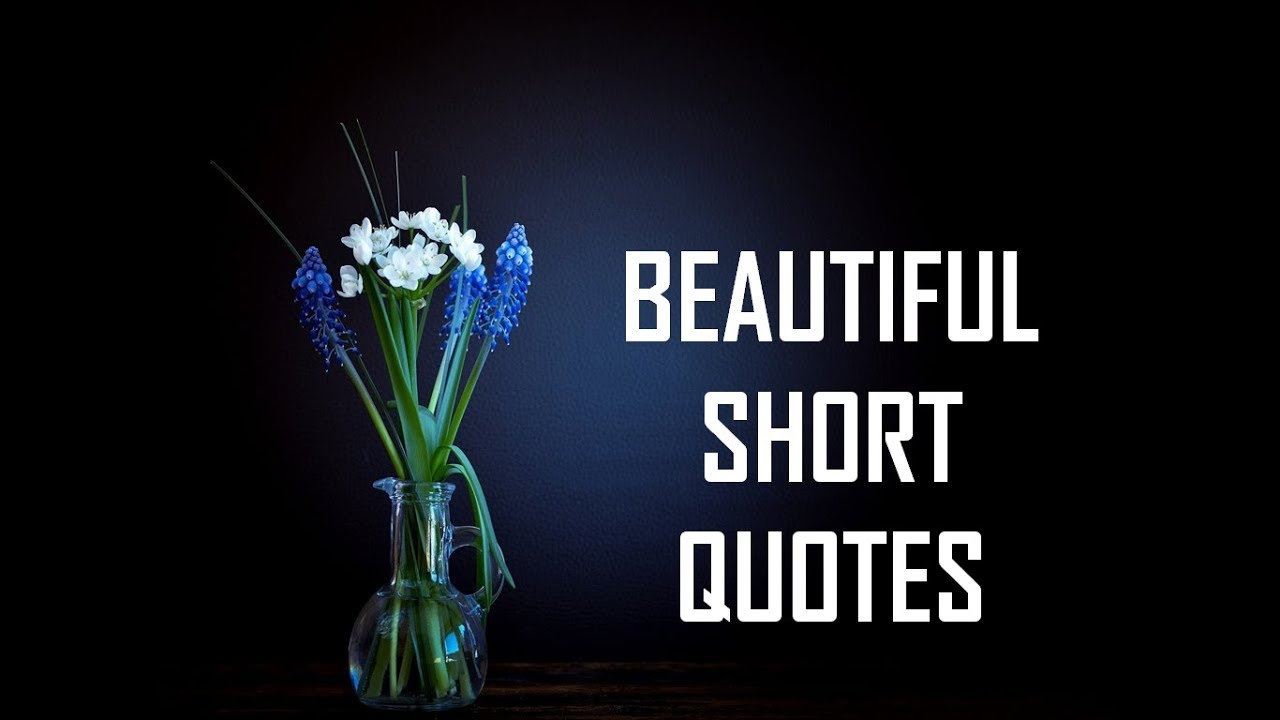 Beautiful Short Quotes Life Lessons Youtube