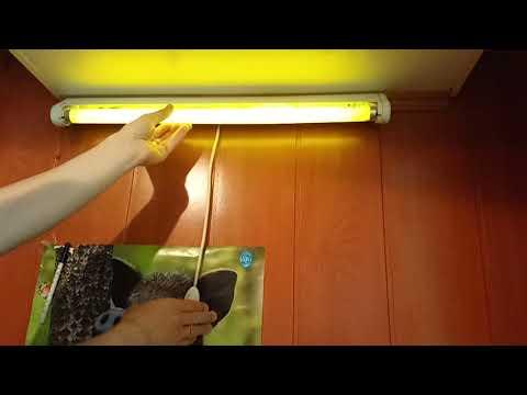 Вопрос: Как отремонтировать гудящую лампу дневного света?