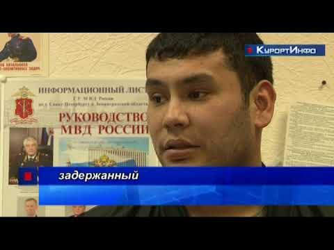 Иностранные граждане, не найдя кошельков в Сестрорецке, обокрали магазин в Александровской
