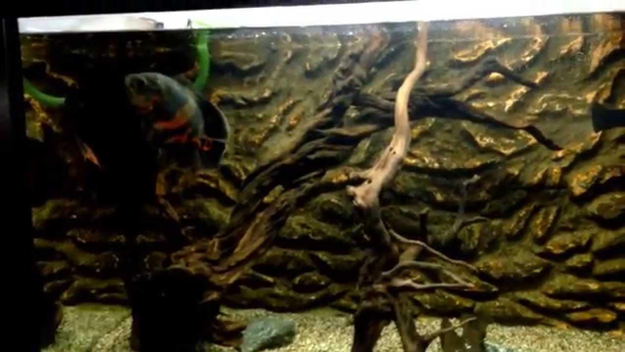 Фон для аквариума двухсторонний. 400 руб. Купить. Рассчитать доставку. Описание. Фон для аквариума двухсторонний темно-синий/чёрный 60х150см (9016/9017) прекрасный товар для всех любителей аквариумистики. С его помощью ваш уход за жителями аквариума станет еще приятнее и проще.
