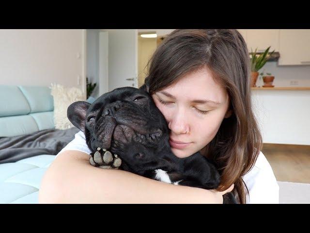 UPDATE | Geht es uns schon besser? | Selber kochen für den Hund?