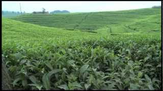 Rwanda: Teatime with Bernadette