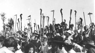 Jacó e Jacozinho - Ladrão de Terra, Os Filhos da Bahia, Terra Bruta