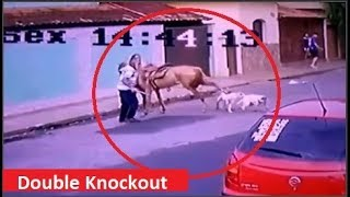 Horse fends off couple of pitbulls!!!