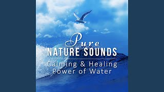 Relaxing Ocean Waves (Music Box for Deep Sleep)