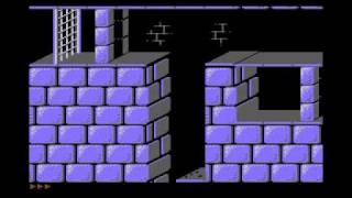 Prince of Persia - Total Pack for Commodore 64: Automatic Level Mirroring