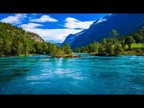 Relaxing Music Stress Relief. Soothing Music for Meditation, Healing Therapy,  Music Saireddy Velma