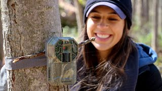 Setting Trail Cams for the Rut | Life on the Road VLOG 1