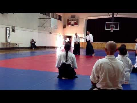 Aikido Friendship Seminar 2013 Venice California.