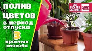 видео Система автополива комнатных растений или как уберечь растения на время отпуска от высыхания