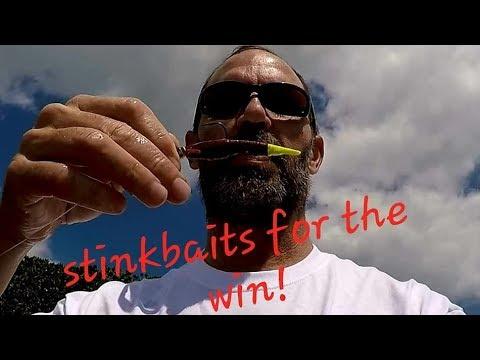 AMAZING Day Fishing With GULP Shrimp! Best Inshore Bait EVER!?!?