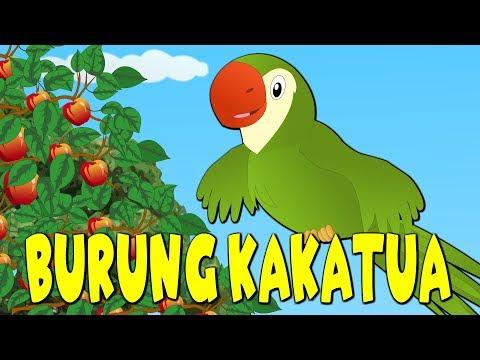 Burung Kakaktua | Versi Baru | Kumpulan | Lagu Anak TV