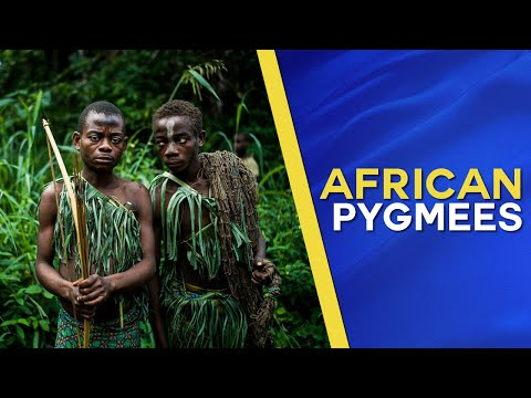 Pygmies of the Zaire rainforest (Documentary about the former Belgian Congo)