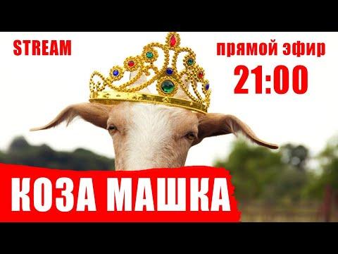 Коза Машка, парламент, ее Instagram, #belarus12stop и фермер Юра