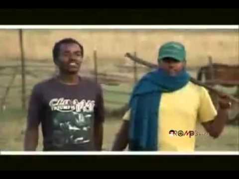 Download Hawi Tezera - Abichu (New Oromo Music 2013)