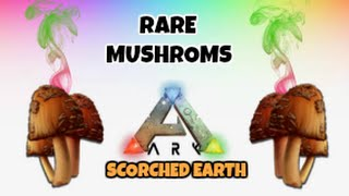 Where To Find Rare Mushrooms (ARK Scorched Earth)