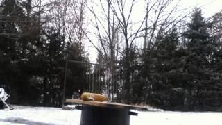 Pounding a nail into a board with a frozen banana