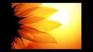 Chillout - Sounds of Isha - Neem and Turmeric