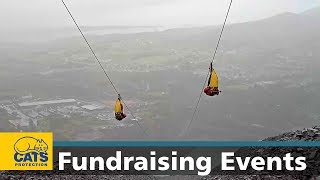 Become a #CatChampion - sign up to zipline for cats! thumbnail