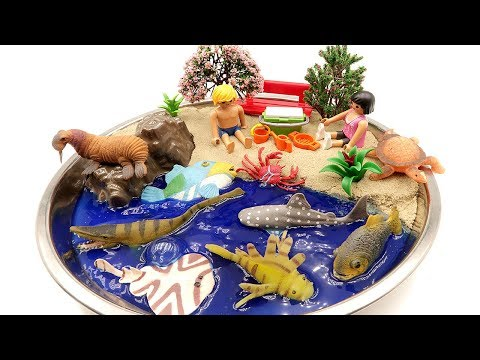 Learn Sea Animal Names For Kids. DIY Beach  Shark, Turtle, Fish, Crocodile, Ray, Playmobil