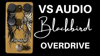 VS Audio Blackbird Overdrive | Fender '65 Blackface and '63 Brownface in a box!