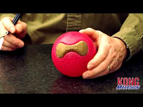 KONG Marathon Ball and Marathon Bone at J&J Dog Supplies
