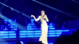 Celine Dion - More Clips From Las Vegas December 31 2017