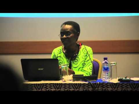 Gender, class and Structural Transformation – Presentation by Prof. Akua O. Britwum