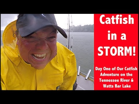 Catfishing In Storms - Chasing Catfish On The Tennessee River - TN RIver Catfishing