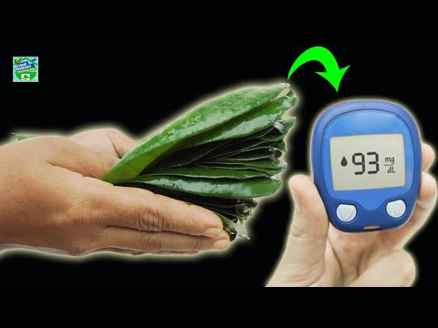 doctors-are-shocked-||-cure-diabetes-forever-with-1-juice