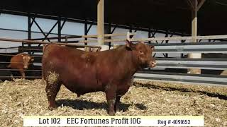 Lot 102 - EEC FORTUNES PROFIT 10G