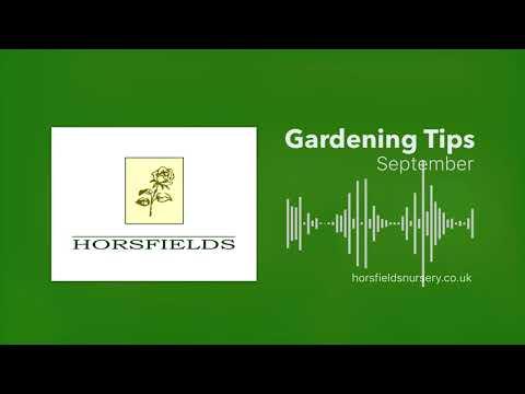 Gardening Jobs In September