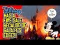 Disney World DESPERATE After STAR WARS: Galaxy's Edge FAILURE?