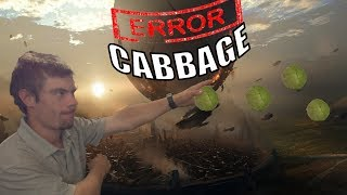CABBAGE ALL DAY EVERYDAY |destiny 2 |