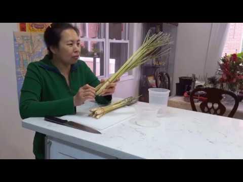 Trồng sả và làm vườn - New York / Plant lemongrass